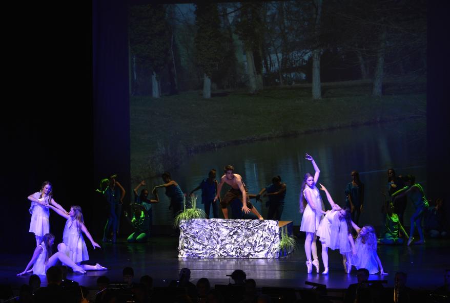 2014 Nachmittag eines Fauns TanzTheater HEEG