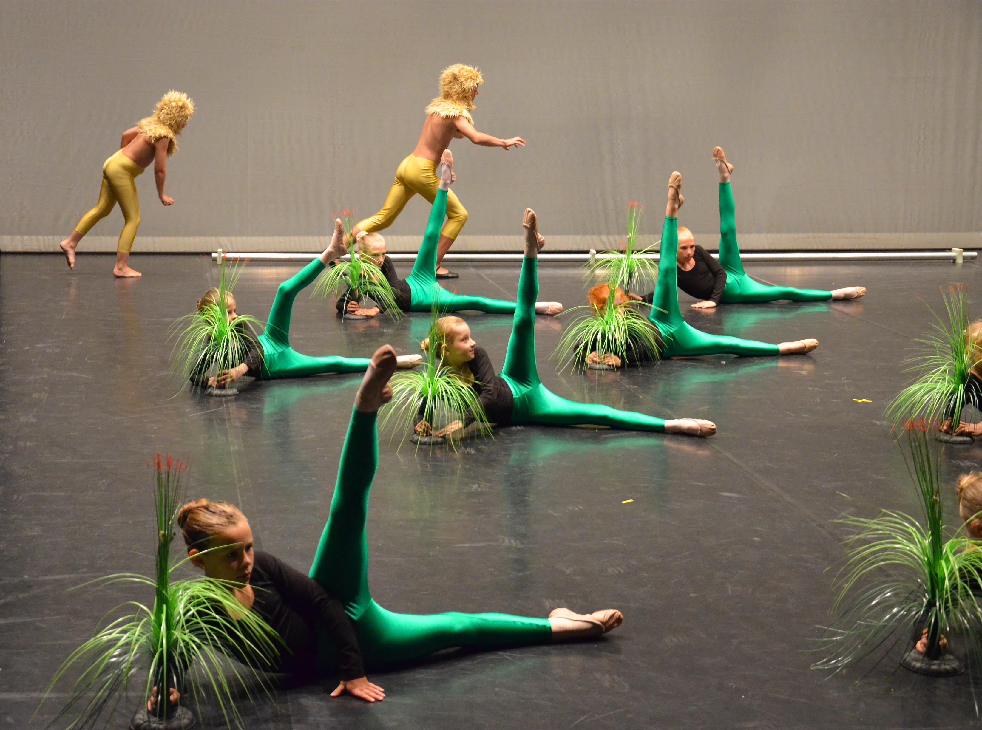 2013 Karneval der Tiere Ballett Tanztheater HEEG
