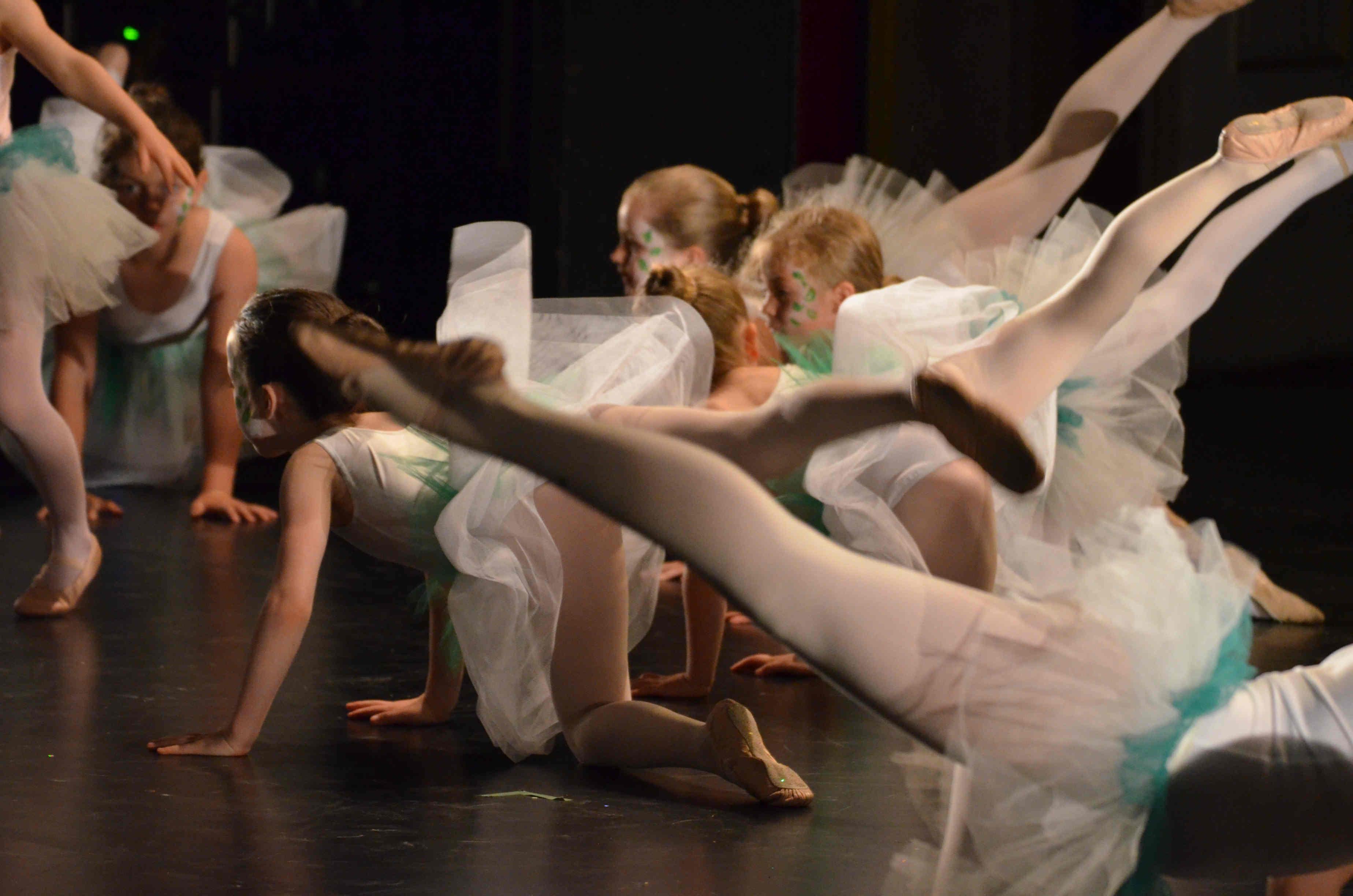 2015 Stadtsplitter Ballett Magnolien I