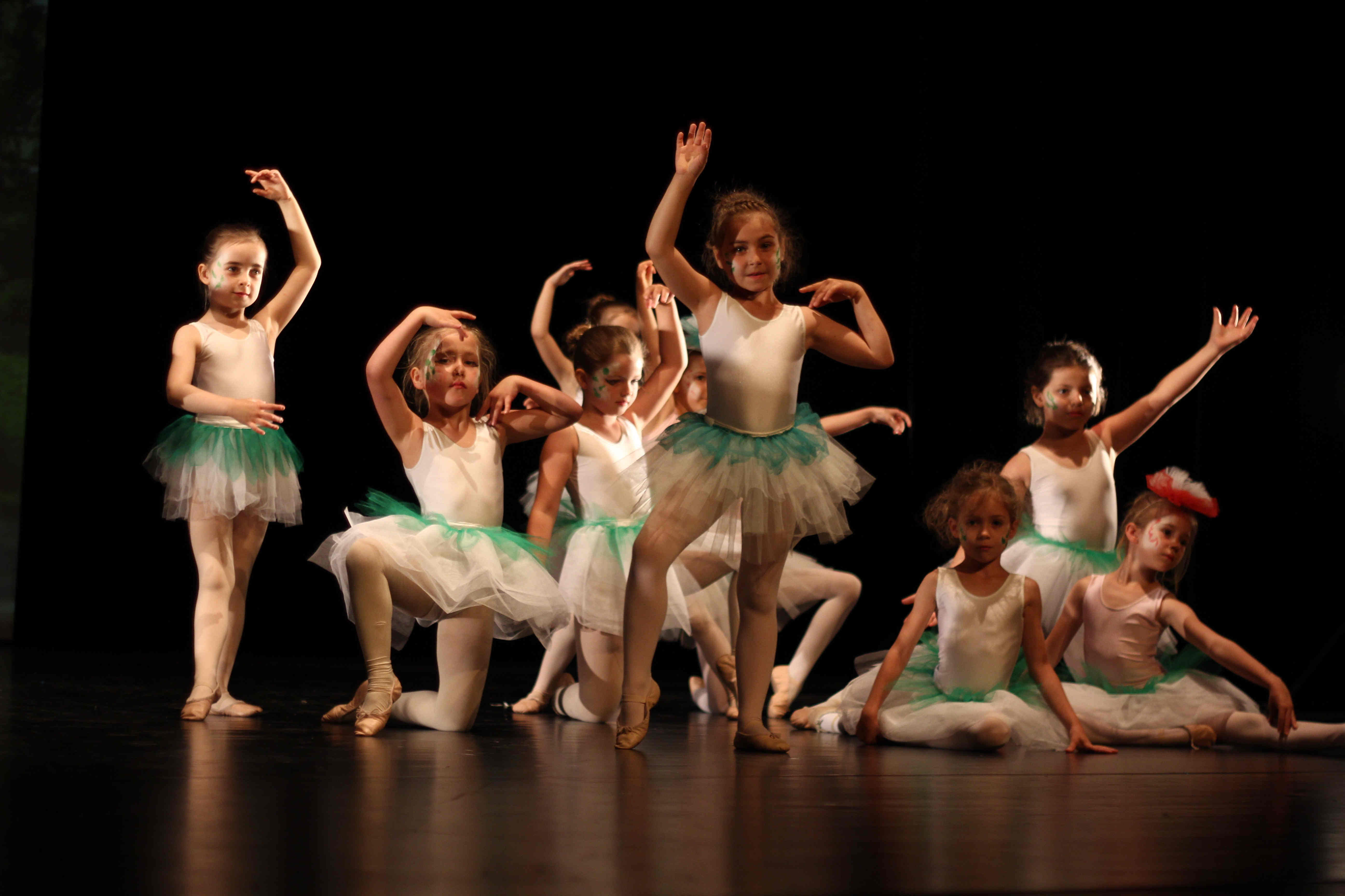 2015 Stadtsplitter Ballett Aschaffenburg Magnolien II